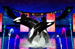 sea world independence